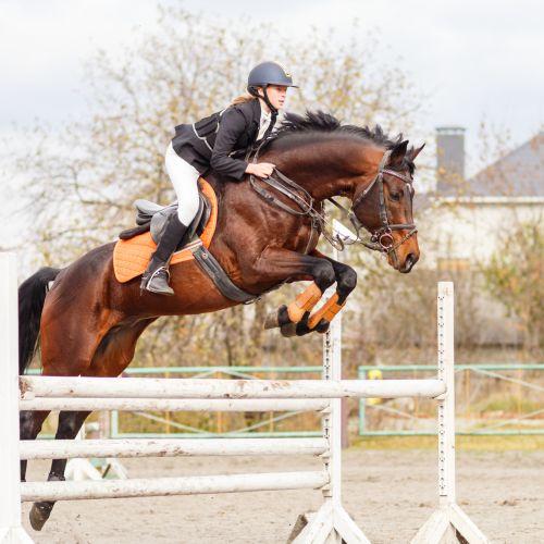 0ae5ccc22f7d4 #1 – ujeżdżenie. Uznane za dyscyplinę najbardziej elegancką w zawodach  jeździeckich.